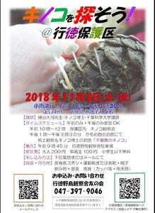 181103キノコ観察会ポスター.jpg